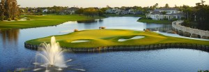 Fiddlesticks Country Club Homes for sale