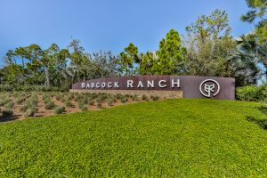 Babcock Ranch Home Search