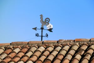 How to Protect Against the Natural Elements That Can Damage Your Roof